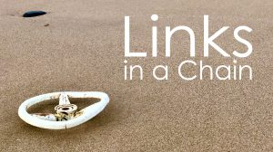 Links in a Chain image showing plastic on the beach